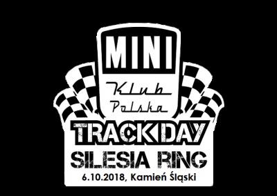 Mini Track Day